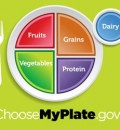 MyPlate Icon Replaces Food Pyramid