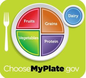 USDA's MyPlate Icon, which replaces previous Food Pyramid