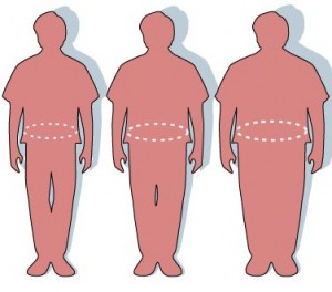 Assistance to Combat Obesity
