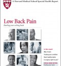 Harvard Issues Updated Report on Low Back Pain: Healing Your Aching Back