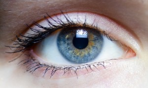Focus on Eye Health & Safety (image courtesy of Wikipedia)