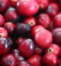 Cranberry Products Do Help Prevent Urinary Tract Infections, New Study Suggests