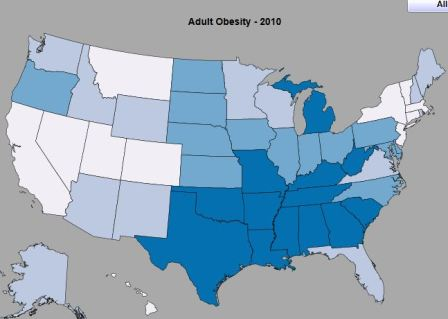 CDC Health Stats - Sortable & Interactive Online Database of Health Indicators and Risk Factors (Image of State Rankings by Adult Obesity courtesy of CDC)