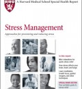 Harvard Releases New Report On Stress Management
